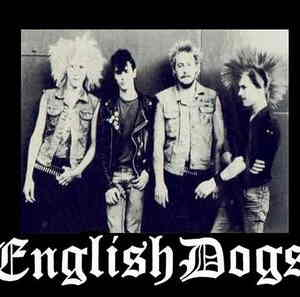 english_dogs
